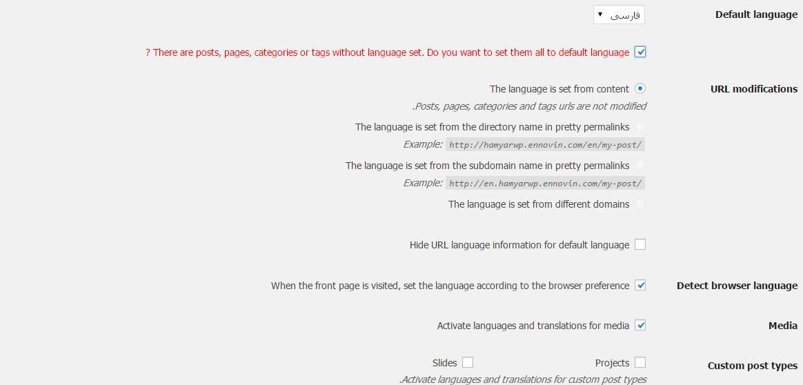 setting plugin - افزونه ترجمه سایت با PolyLang برای وردپرس