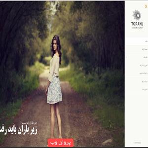 dd - دانلود قالب عکاسی Toranj فارسی وردپرس نسخه 1.7