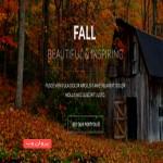 fall 150x150 - دانلود قالب FALL برای وردپرس