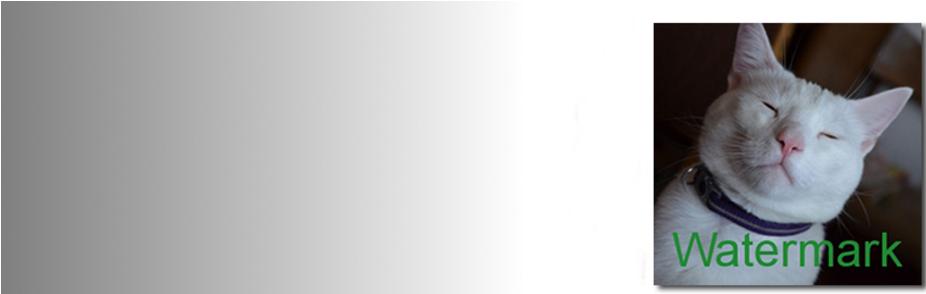 axxx - افزونه ایجاد خودکار واتر مارک بر روی تصاویر شاخص در وردپرس با Watermark Reloaded