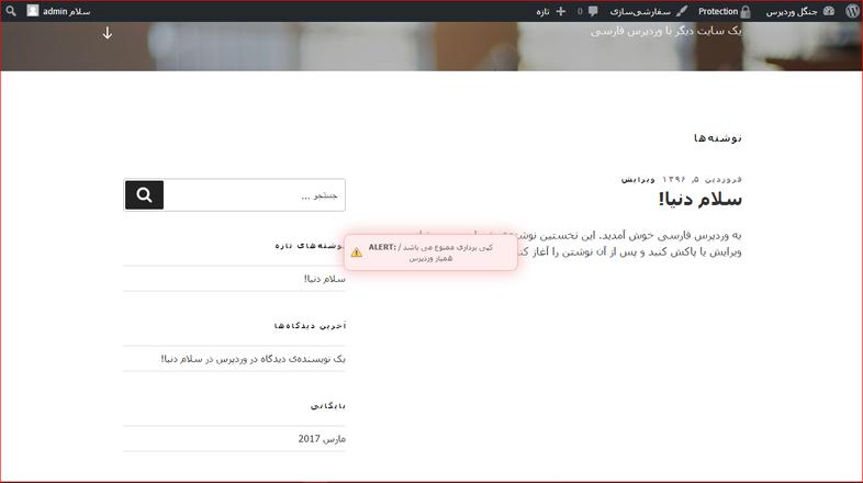 finish - افزونه جلوگیری از راست کلیک در وب سایت وردپرسی با wp content copy protector