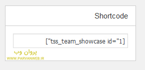 Team Showcase 4 - افزونه نمایش اعضا تیم و لیست نویسندگان در وردپرس Team Showcase