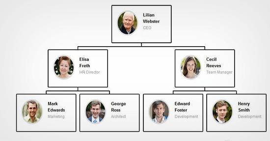 org chart example2 - آموزش ساخت نمودار سازمانی در وردپرس با افزونه Easy Org Chart