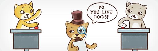 quiz cat - معرفی و مقایسه 9 افزونه آزمون برای وردپرس – بهترین افزونه آزمون وردپرس
