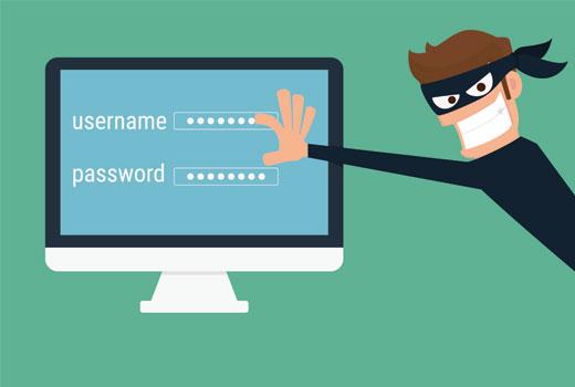 stolenpassword - 11 دلیل عمده هک سایت های وردپرس | راه های جلوگیری از هک سایت وردپرس