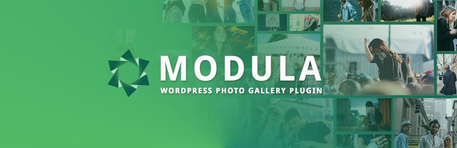 wp modula free gallery plugin - 15 افزونه رایگان وردپرس برای ساخت گالری حرفه ای
