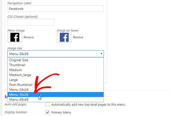socialiconsize - آموزش اضافه کردن آیکون رسانه های اجتماعی به منوهای وردپرس با افزونه Menu Image
