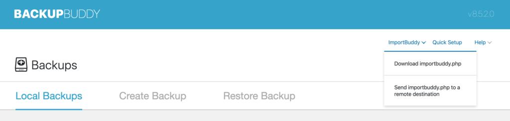 ImportBuddy backupbuddy 1024x244 1 - آموزش انتقال وردپرس به دامنه جدید | تغییر دامنه سایت