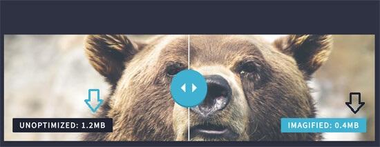 optimizedvsunoptimizedimage 1 - آموزش بهینه سازی تصاویر وردپرس و کاهش حجم عکس برای سایت