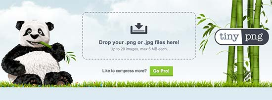 tinypng - آموزش بهینه سازی تصاویر وردپرس و کاهش حجم عکس برای سایت